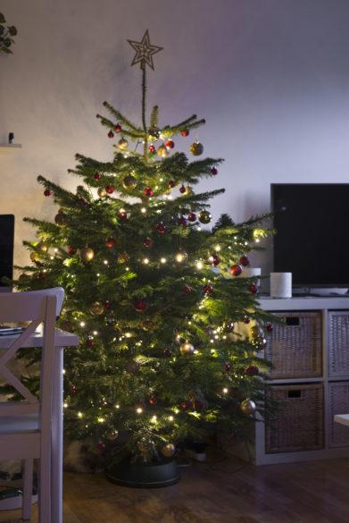 zlato-červený vánoční stromeček
